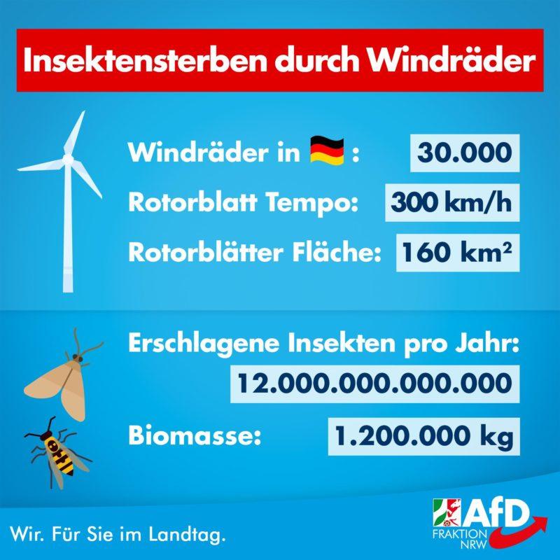 windkraft insektensterben