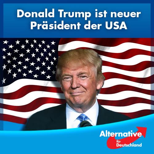 Trump Afd