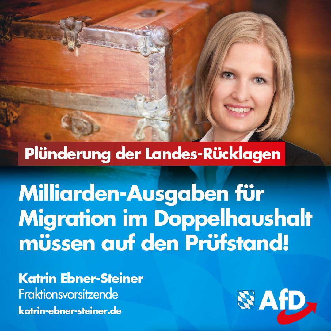 Wie die Asylkostenlawine noch gestoppt werden kann (1)