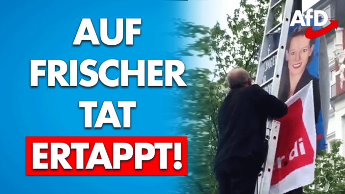afd plakate